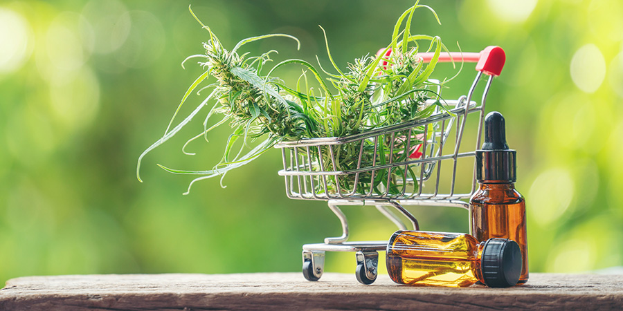 Hemp plant in shopping cart next to CBD oil. What is the entourage effect. Buy CBD oil online USA. But hemp seed oil online. terpene entourage effect.